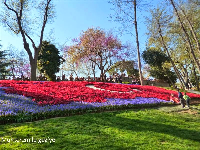 Emirgan tulip time