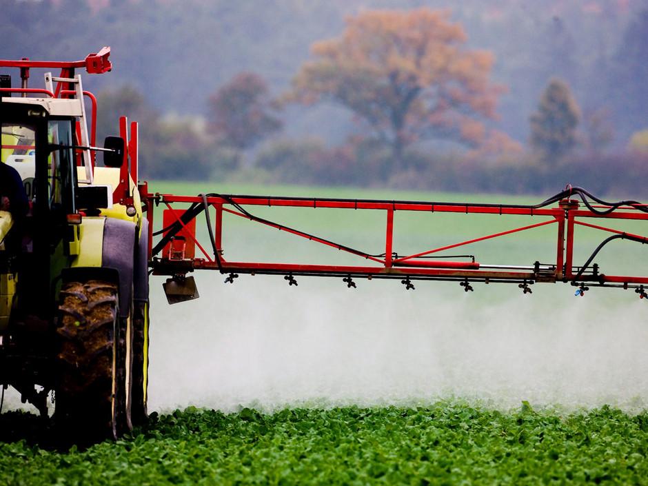 http://4.bp.blogspot.com/-X6Um8jDkUkI/TZmyQShuAjI/AAAAAAAAAKc/GQOJBSNqKGw/s1600/pesticides.jpg