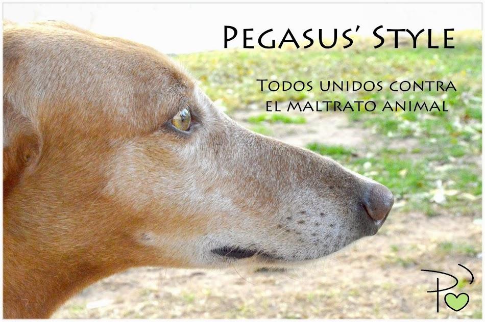 Pegasus' Style