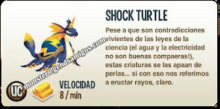 imagen de la descripcion de shock turtle