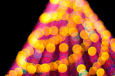 светлините на коледната елха на софия