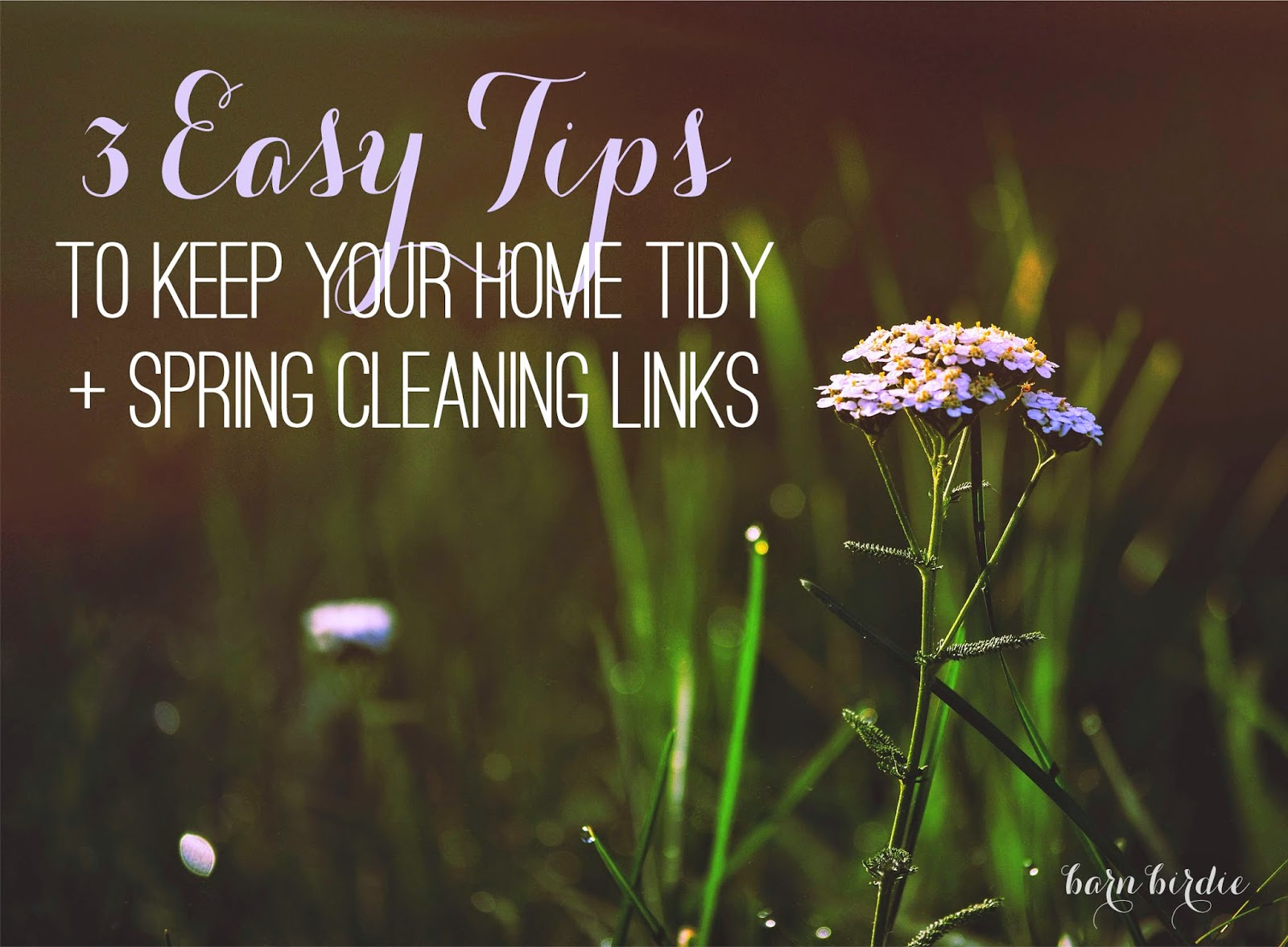 Spring Cleaning, Life Organizing, Home Organization