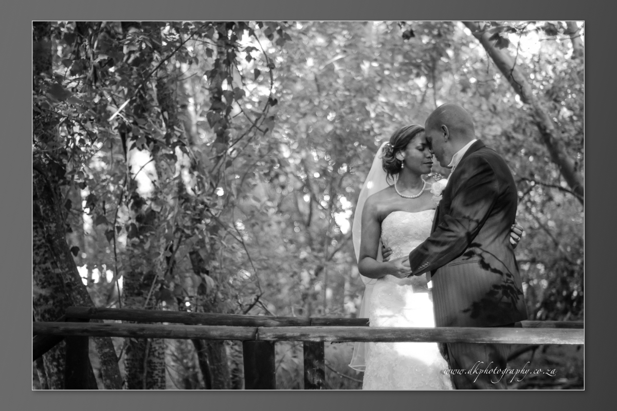 DK Photography DVD+slideshow-368 Cleo & Heinrich's Wedding in D'Aria, Durbanville  Cape Town Wedding photographer