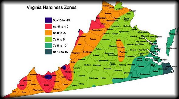 Mid Atlantic 2nd Half Ve able Planting Dates Zone 7 Virginia Maryland & North Carolina