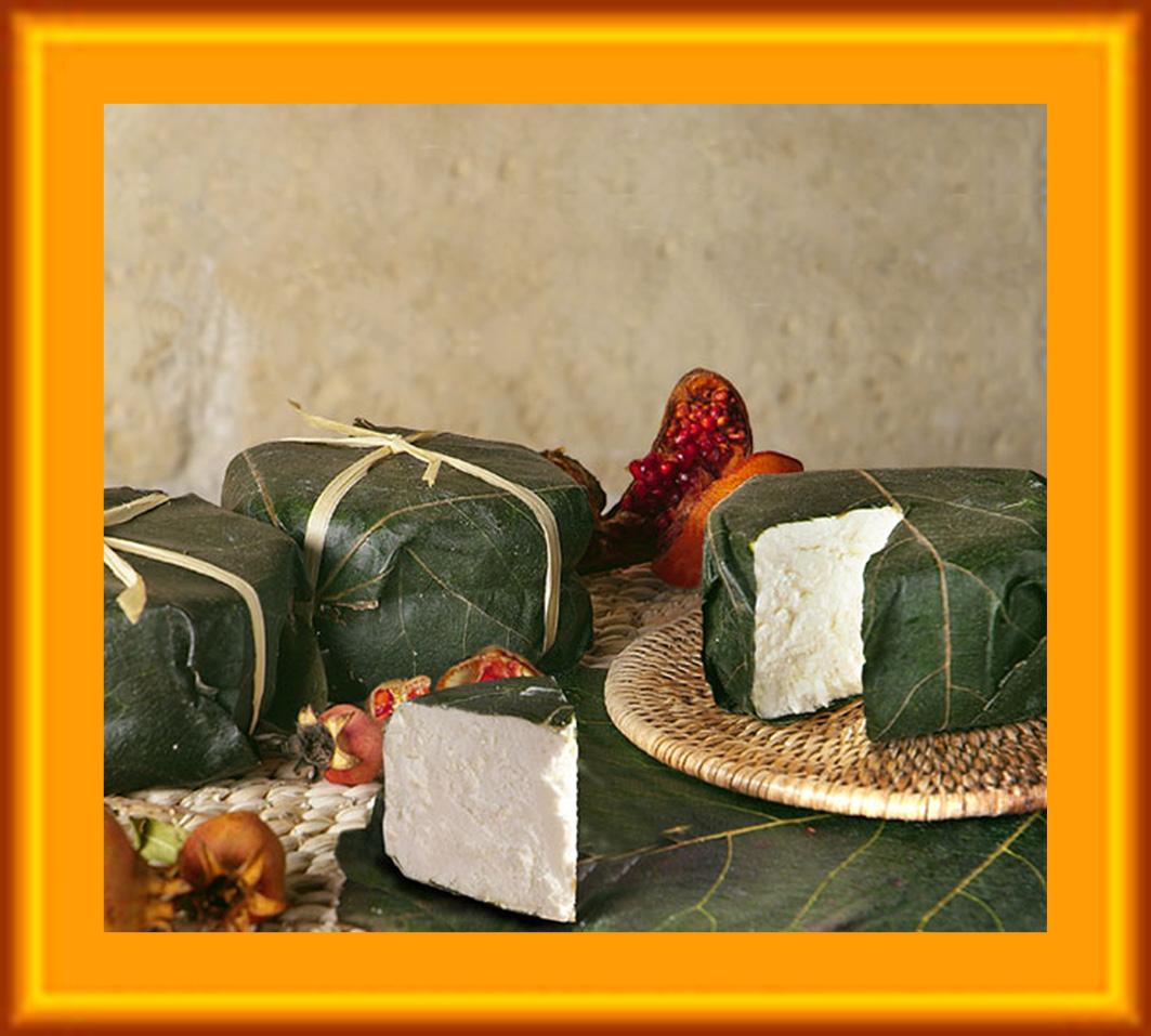 Todo sobre quesos - Mundoquesos: Ficaccio
