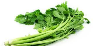 Ini sejuta manfaat daun seledri untuk kesehatan anda