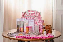 2015 Pink Zebra Basic Business Kit image