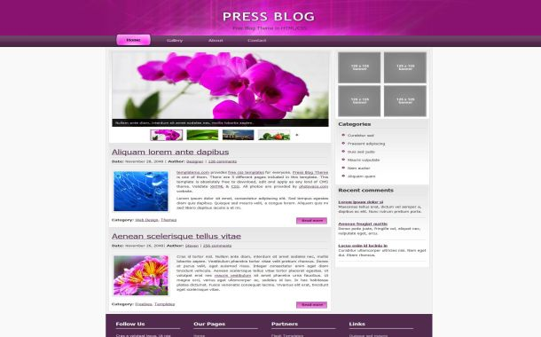 Free HTML Flowers Pink CSS Web2.0 Website Template