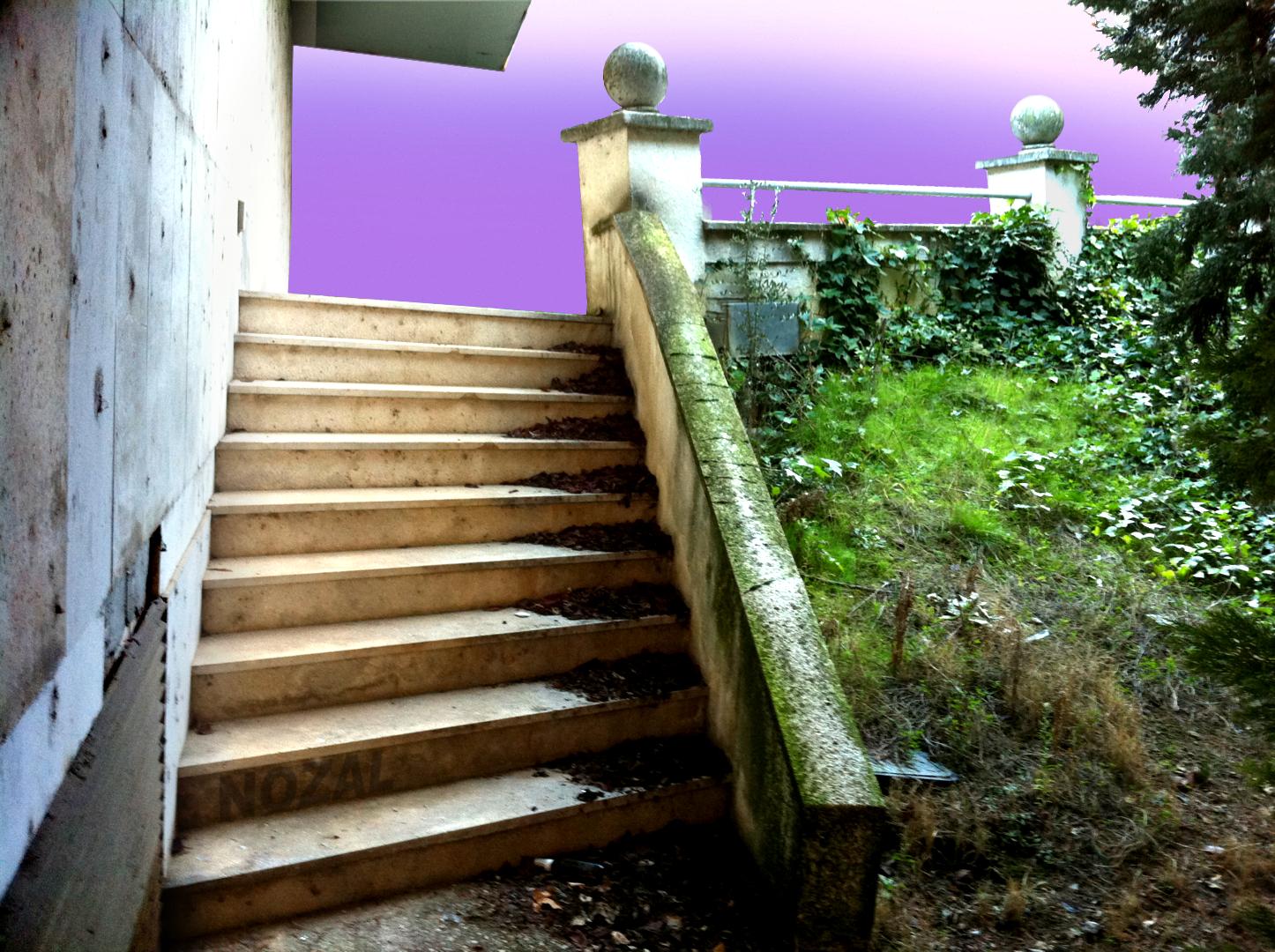 Acceso imaginario al Museo Caneja, 2014 Abbé Nozal