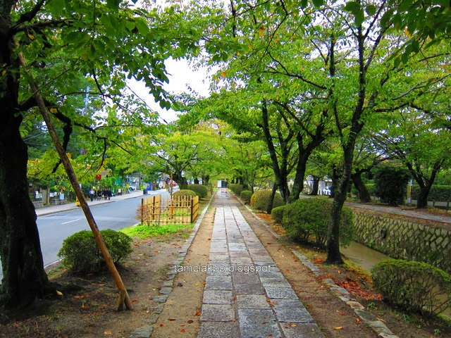 Philosopher's Path, Kyoto