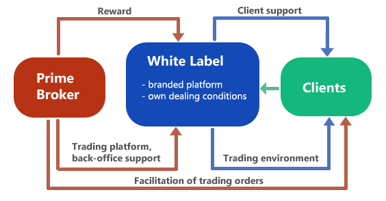 Best forex white label program