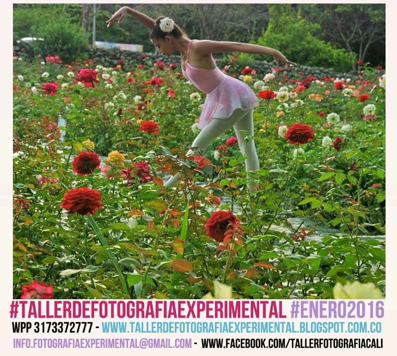 #FotografiadeDanza #JUNIO2012 #TallerdeFotografiaExperimental