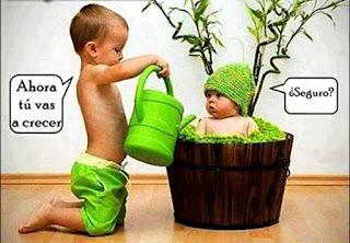 Imagenes chistosas con bebes