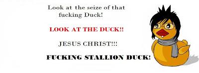 http://4.bp.blogspot.com/-X8VTvMDF_5c/T8OmVXyatFI/AAAAAAAABas/xurdtmr2Y0M/s1600/Stallion+Duckl.jpg