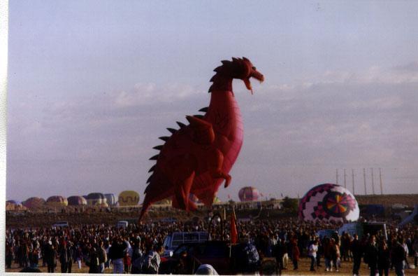 Albuquerque Balloon Festival8