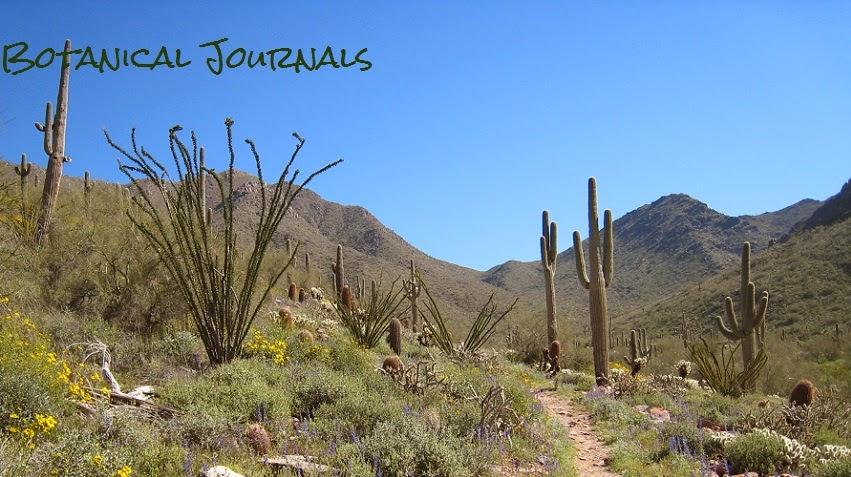 Botanical Journals