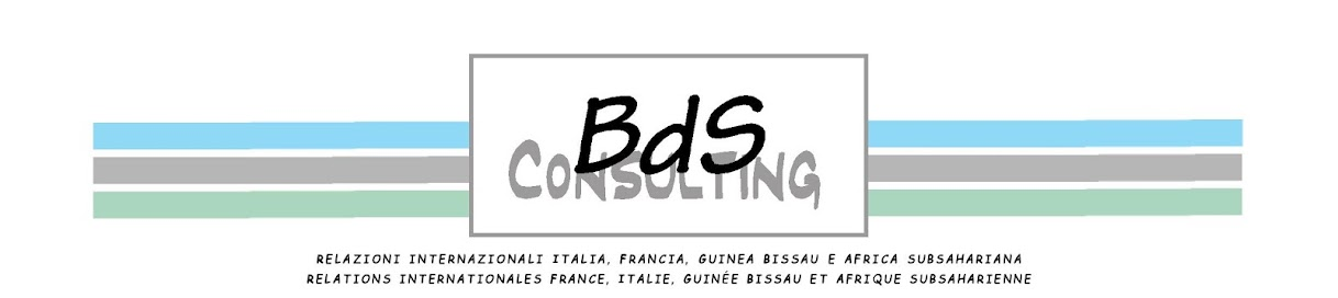 BdS Consulting