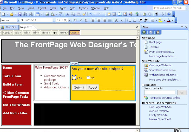 ms frontpage 2003 portable