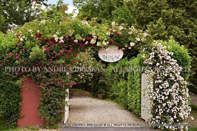 Pensieri in forma di rosa dimora di campagna e giardino roseto biodinamico country home with - Giardino di campagna ...