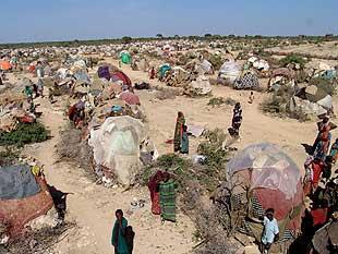 Campo de refugiados de Dadaab (Fuente: http://4.bp.blogspot.com/-X9QM_IiL748/ThotuNqn4_I/AAAAAAAABds/JdMbE8MDodI/s320/da.jpg)