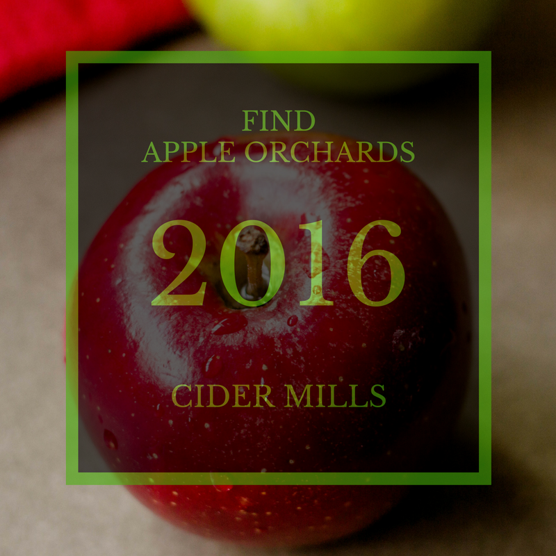 Apple Orchards & Cider Mills