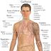 10 نصائح للتخلص من إدمان الكافيين