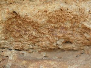 pintures rupestres els abrics d'ulldecona