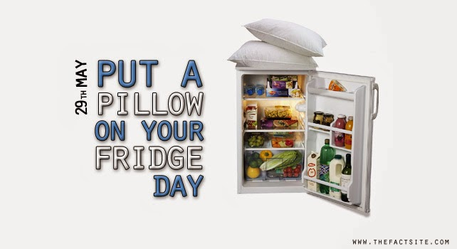 every day is special may 29 put a pillow on your fridge day