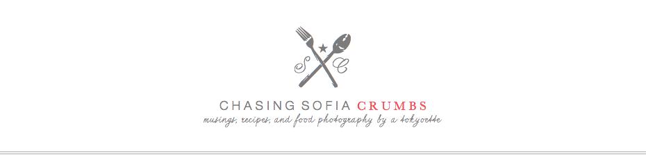* chasing sofia crumbs