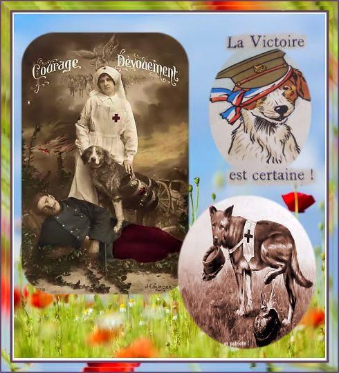 nurse, dog, verpleegster, oorlog, infirmier, guerre, femme,harnais, atelles, pistage, chiens, canina, honden,14 18,
