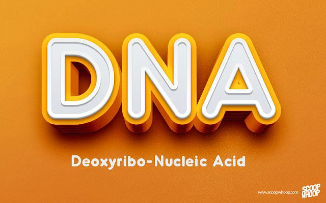 DNA-DEOXYRIBO-NUCLEIC-ACID
