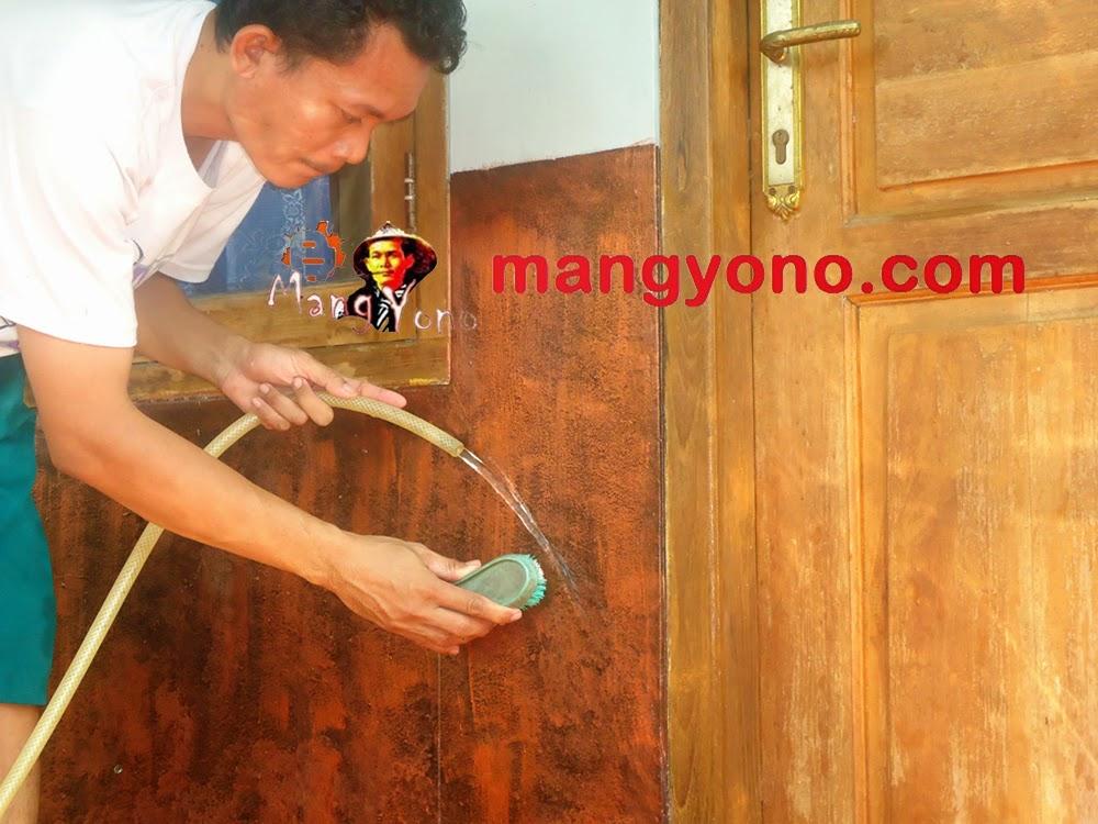 Tips / cara membersihkan dinding rumah dari noda membandel