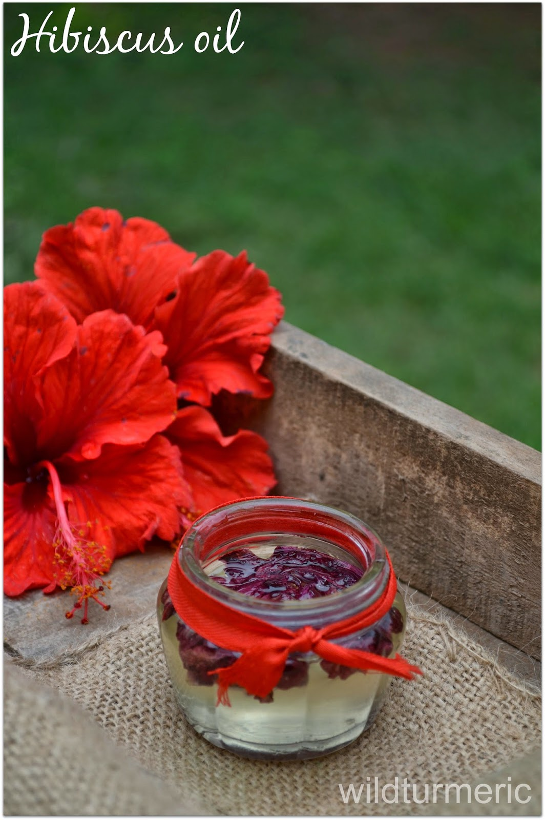 DIY:How to Make Hibiscus Oil for Hair Growth