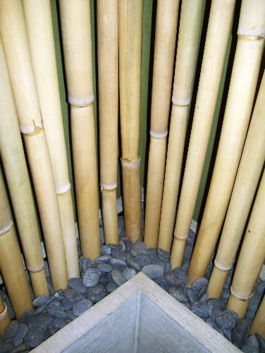 Bamboo Privacy Screen3