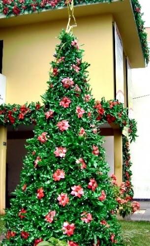 decoracao arvore de natal reciclavel : decoracao arvore de natal reciclavel:Blog de Arquitetura e Decoração : Diy: Árvore de Natal Ecológica