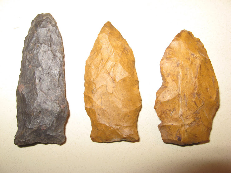 BERKS COUNTY, PA. PALEO POINTS