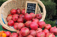 Click Pomegranates for Farmer/Vendor Application