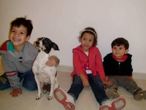 Crianças e Animais - Uma alegre e sadia convivência
