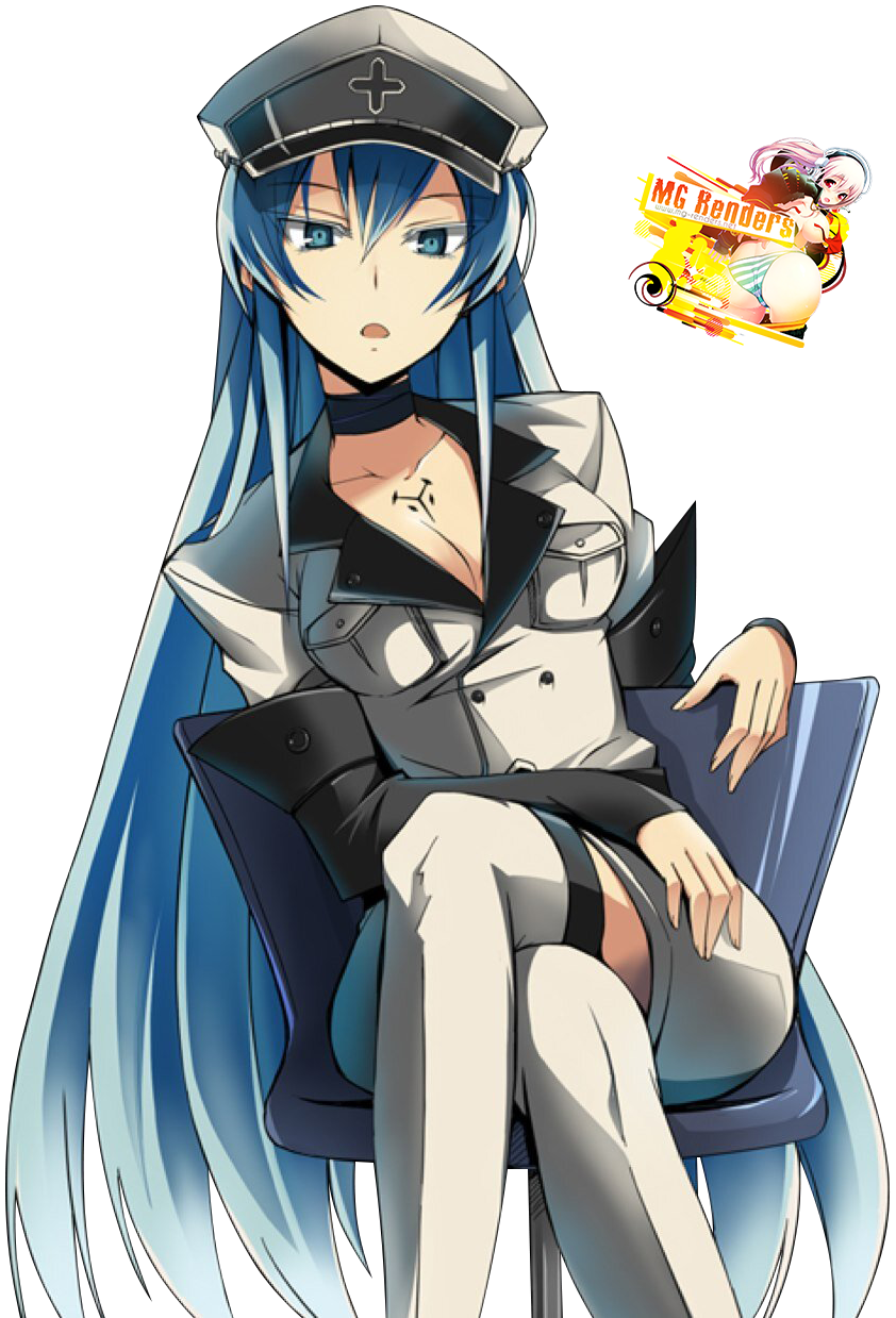 Tags: Anime, Render,  Akame Ga Kill!,  Crossed Legs,  Esdese,  PNG, Image, Picture