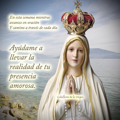 Imágenes de la Virgen de Guadalupe con frases