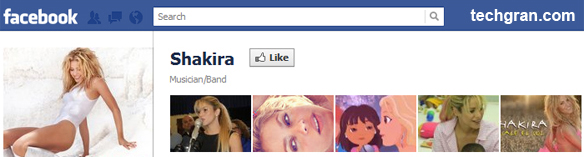 Shakira on Facebook,Musician/Band