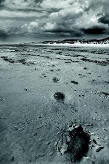 prehistoric footprints formby beach