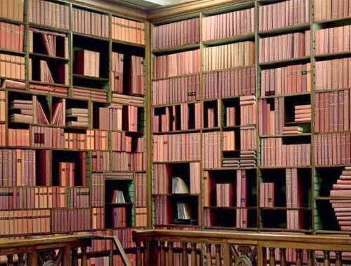 Optical Illusion Bookcase