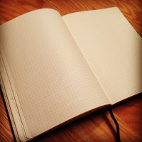 blank pages in my journal