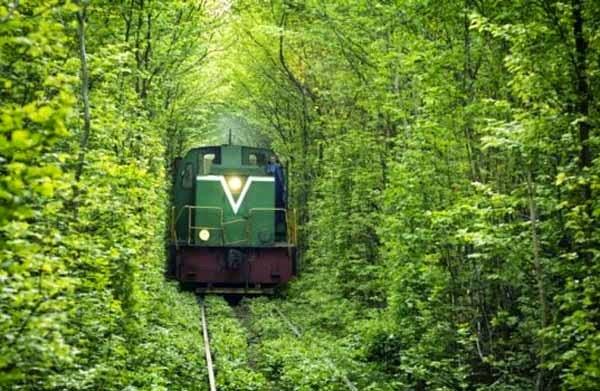 9. टनल ऑफ लव, यूक्रेन (Tunnel of Love, Ukraine)
