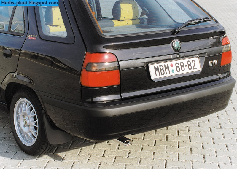 Skoda felicia car 2000 exhaust - صور شكمان سيارة سكودا فليشيا 2000