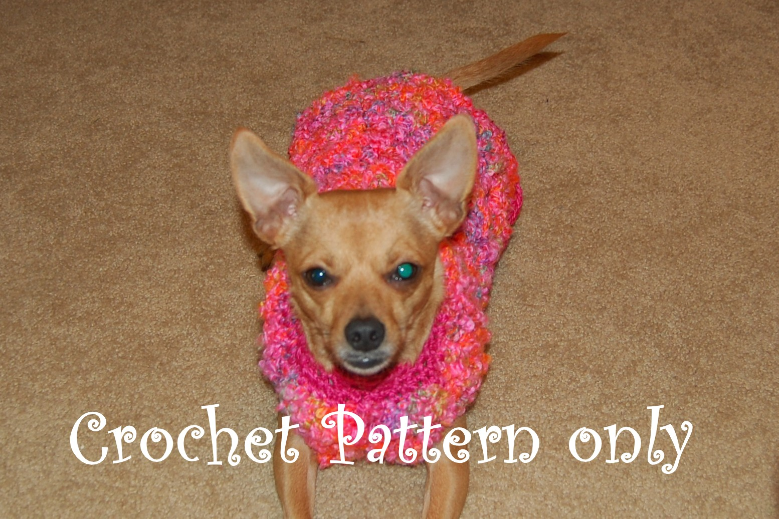 Posh Pooch Designs Dog Clothes: Big Dogs Crochet Patterns
