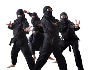 ninja.jpg.jpg