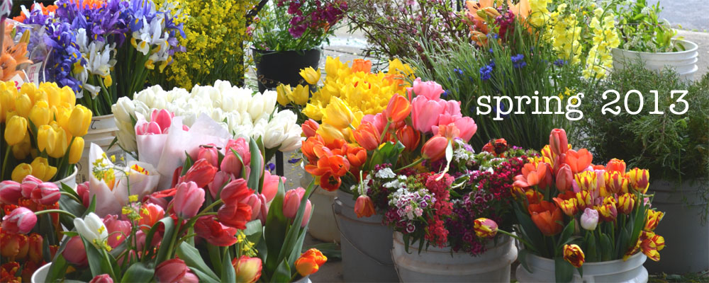 Plumfield Shop