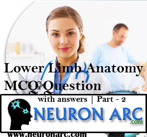 Lower Limb Anatomy MCQ Questions With Answers | Part-2